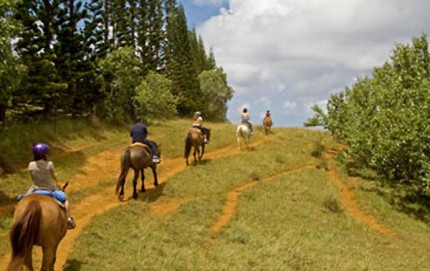 Offerta Weekend a Cavallo a Fiuggi Terme